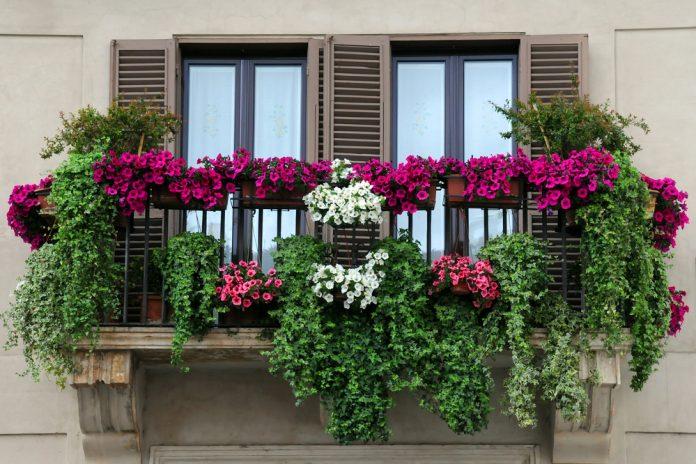 bloemen balkon