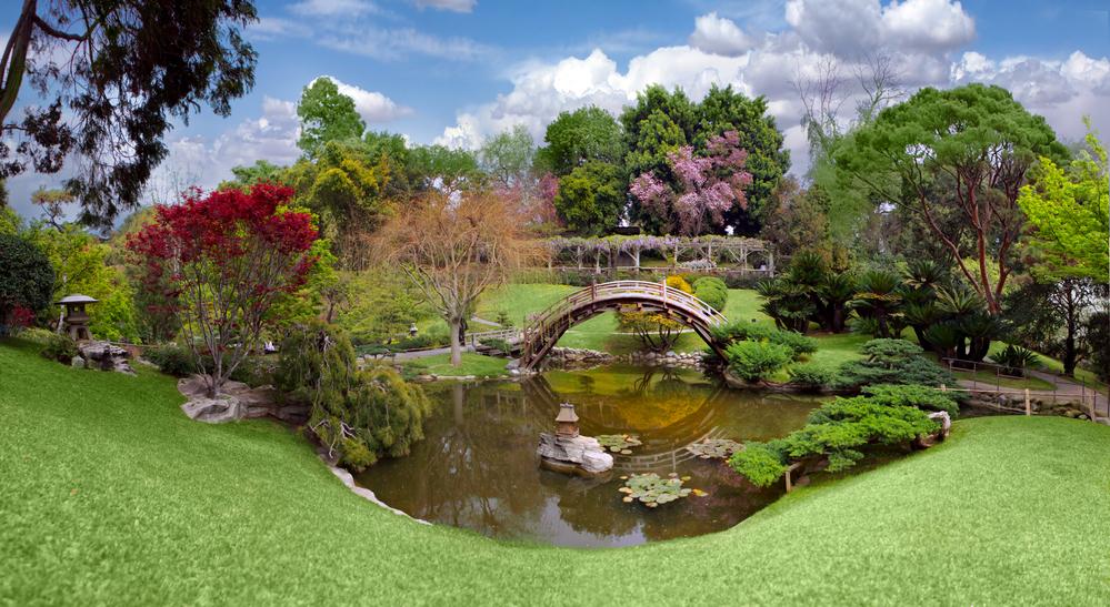 Welk effect heeft het opknappen van de tuin op je woningwaarde?
